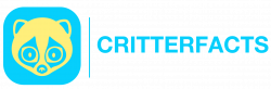 CritterFacts Global